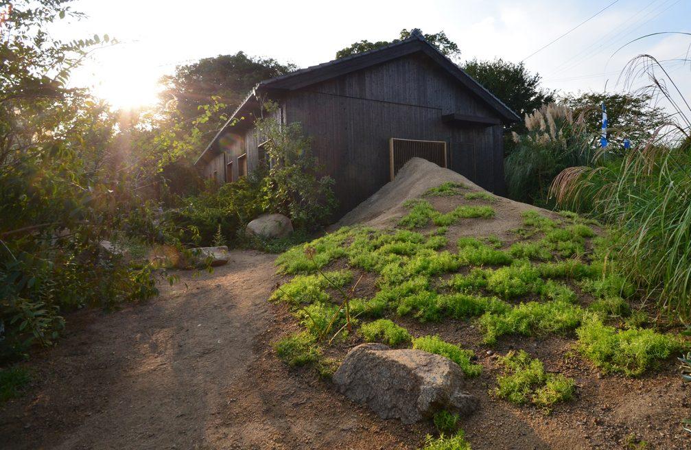 The Siebold Garden