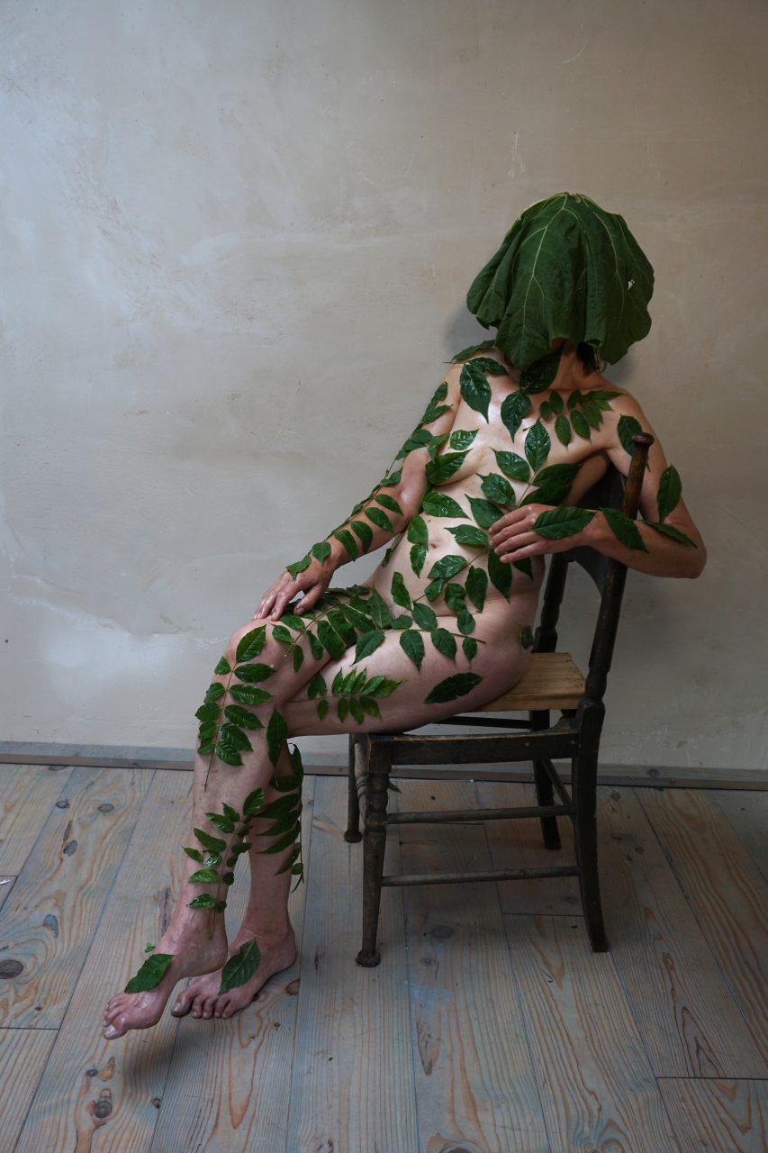 herbarium-plant2