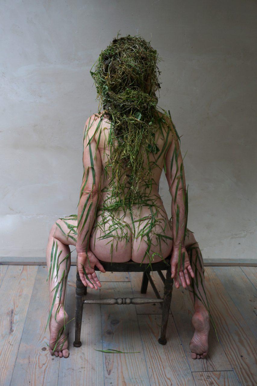 herbarium-weed