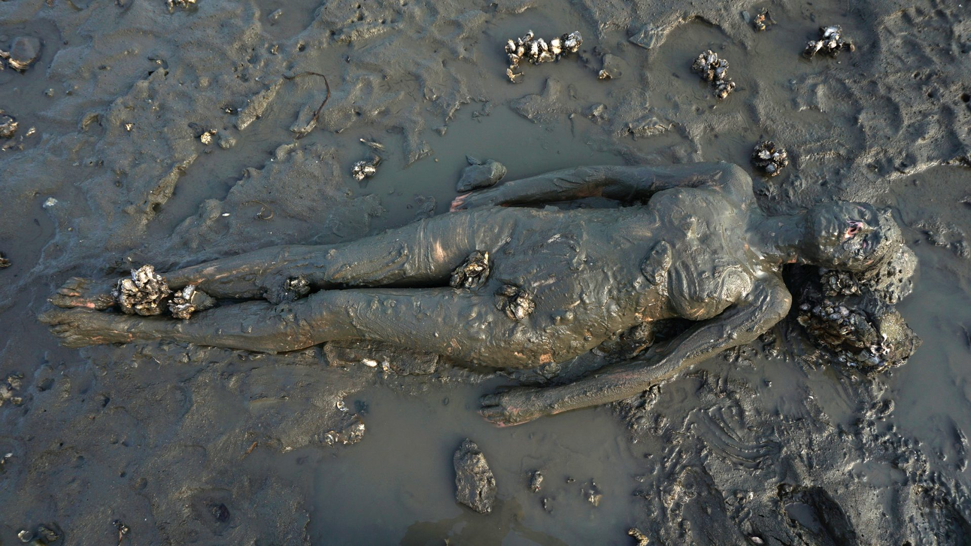 Tide-Low-fullbody
