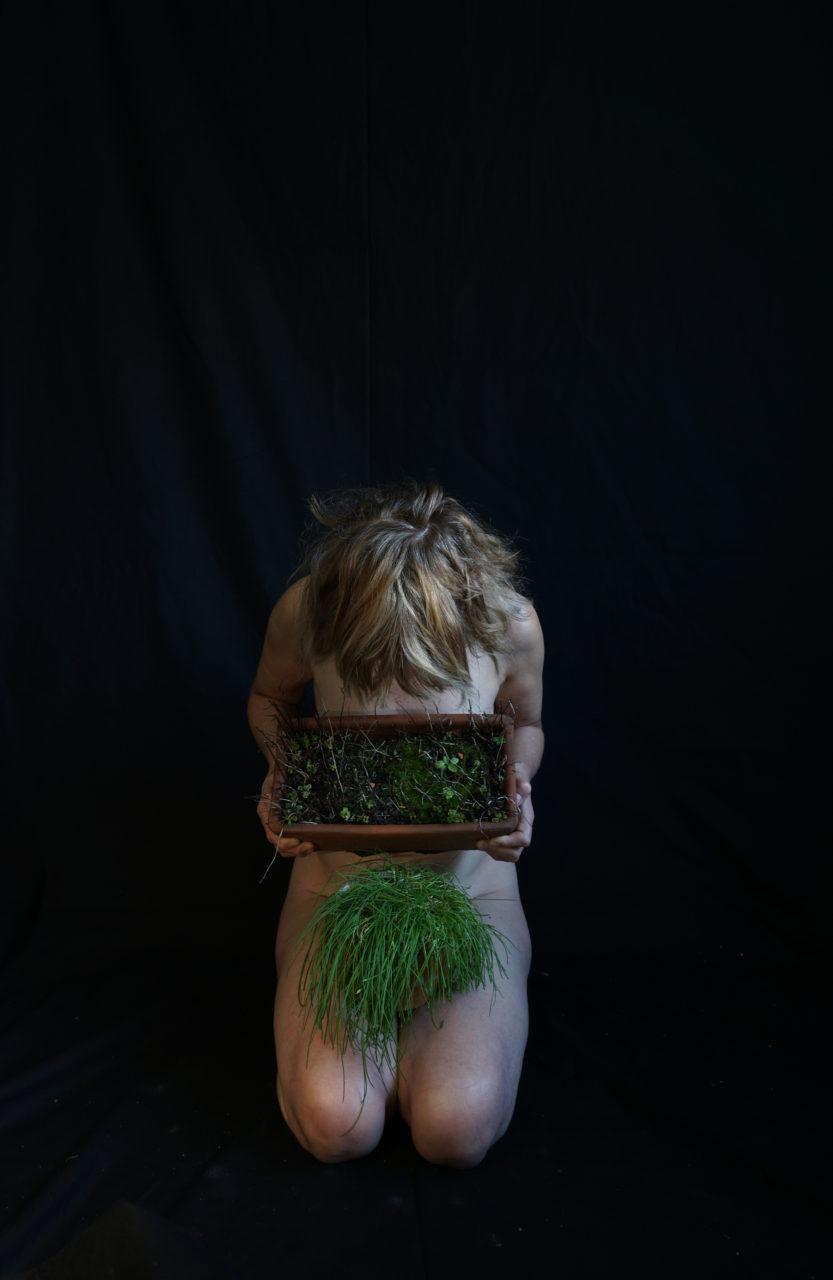 herbarium-cult2